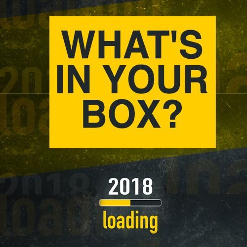eoy_mystery_box_item_image